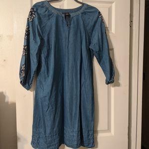 Ladies Jean dress